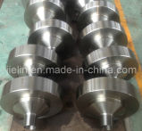 Flange Companion/ Thread Flange for Wellhead