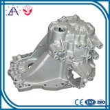 China OEM Manufacturer Pressure Die Casting (SY1289)