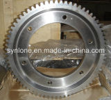 Special Machining Gear Shaft in China