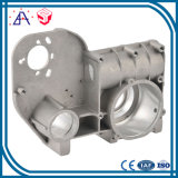 Customized Made OEM Aluminum Die Casting Lighting Parts (SY1153)