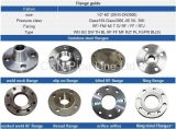 ASTM A105 Forging Dn500 Pn10 Steel Flanges