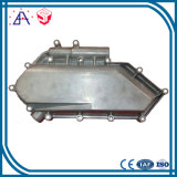 Professional Custom Aluminium Die Casting for Auto Part (SY0126)