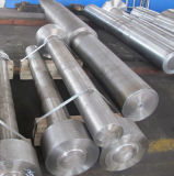 Forged ASTM A269 TP304 Steel Nut Shaft