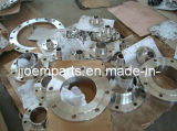 Stainless Steel Forged Flanges/Forging Flanges