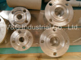 Aluminum Alloy Pipe Fitting Flange
