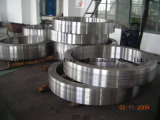 Seamless Rolled Ring/Forging Rings/Slewing Ring