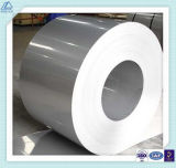 Various Size Aluminum/Aluminium Coil Alloy for Wall Ceiling Panel
