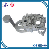 New Design Die Casting for Aluminum Cold Forging (SYD0151)